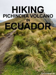 An adventure in Ecuador: summiting the formidable volcano Pichincha near the capital city of Quito.