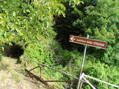 "Follow the ""witch's path"" down the mountain, explore the lush forest surrounding the village of Triora."