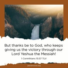 Praise and give thanks to our Lord today! Jewish Voice with Jonathan Bernis M-F at 8:30/7:30p CT on GEB Network.