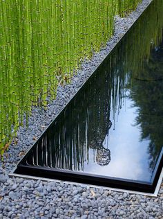 Modern landscaping by Anthony Paul Landscape Design good detail of water feature against pool edge
