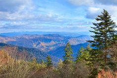 The Great Smoky Mountains! Such a gorgeous place!