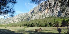 Visit Lanaitto valley