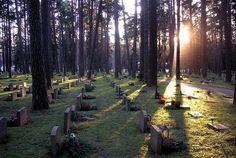 Лесное кладбище в Стокгольме