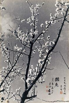 Photograph of the garden of Zhang Daqian by Hu Chung-Hsien from 1979.    ladfish.com