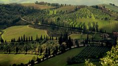 The hill upon which Montalcino sits has probably been settled since Etruscan times.