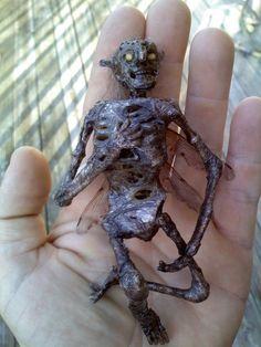 Mummified Cottingley Fairy Corpse Map Sideshow Prop Gaff | eBay