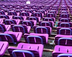 At any point during the year there are opportunities to attend sporting events or possibly even more ideal, visit an empty stadium. It'll give you chance to take a few excellent seating pictures like these. Purple Outdoor Furniture, Stadium Seats, Royal Colors, All Things Purple, Green And Purple, Yellow, Favorite Color, Lavander, Red
