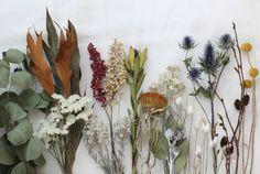 FLEURI (フルリ)| ドライフラワー dryflower グレビリア ドライアンドラ ユーカリ
