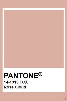 Pantone Cameo Rose Pantone colo palette for art and home decor Colour Pallete, Colour Schemes, Color Patterns, Beige Color Palette, Pantone Swatches, Color Swatches, Pantone Colour Palettes, Pantone Color, Beige Pantone
