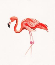Katrina Sophia Blog: watercolor flamingo