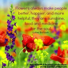 Beautiful, inspirational quote picture! :) #flowers #beauty #happiness #love