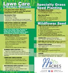 Grass seed, lawn care and wildflower seed planting guide.