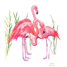 Flamingos pink flamingos, original watercolor painting 14 x 11 in ($49) ❤ liked on Polyvore featuring home, home decor, wall art, flamingo painting, watercolor wall art, photo wall art, watercolour painting and water color painting