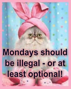 Absolutely! After the Monday I've had!