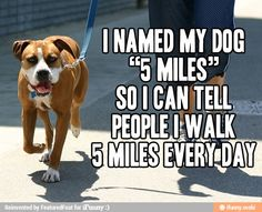 """We all know that person that goes """"jogging"""" when we all know damn well there's no effing way they could possibly jog..."""