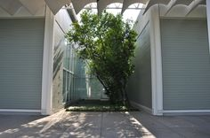 Image 2 of 14 from gallery of AD Classics: Menil Collection / Renzo Piano. Photograph by D Jules Gianakos