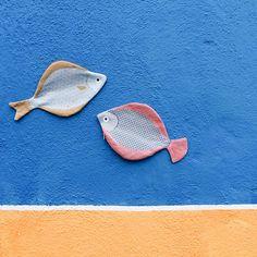 Don Fisher, Ocean Crafts, Gone Fishing, Instagram Posts, Pattern, Craft, Patterns, Model, Swatch