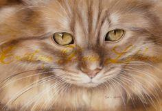 """DVD """"La chat"""" de la collection """"La peinture, ça s'apprend!"""" par Denise Lefebvre"""