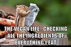 The vegan life. <3