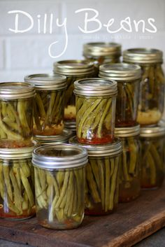 Dilly Beans [Pickled Green Beans] Crunchy, with a kick! made 8 pint jars 2 large bags green beans I think pounds each. Kefir, Pickled Green Beans, Canning Food Preservation, Preserving Food, Pickle Vodka, Pickle Jars, Canning Vegetables, Canning Pickles, Homemade Pickles