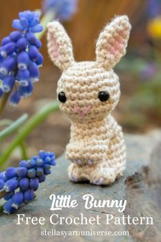 This free crochet pattern for my little amigurumi bunny is a great project for improving beginners as well as seasoned crocheters! Crochet Baby Toys, Crochet Bunny, Cute Crochet, Crochet Dolls, Easter Crochet Patterns, Crochet Patterns Amigurumi, Crochet Gratis, Stuffed Animal Patterns, Yarn Crafts