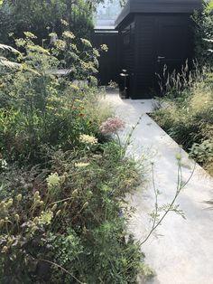 Dutch Gardens, Small Gardens, Amazing Gardens, Beautiful Gardens, Scandinavian Garden, Planting, Gardening, Savage Garden, Contemporary Garden Design
