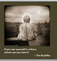 If you see yourself in others, whom can you harm? - The Buddha