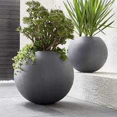 Shop Large Ball Planter.  Earth-friendly globe planter does a world of good, cast of naturally derived mineral compounds, sea salt, sand and fiber and manufactured with low emissions and minimal energy use.