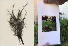 Many of Aubrey Schwartz's prints feature close-ups of natural elements, like flowers or grasses. What details do you notice in your environment? Examples could include trees, rocks, or house plants. Choose a natural object and make a viewfinder to focus on a detail. To make a viewfinder, grab a sheet of paper and cut a small hole in the center. Stand away from your chosen object, hold up the viewfinder, and look through the hole with one eye closed. On another paper, draw the details you… Grasses, House Plants, Rocks, Environment, Trees, Museum, Eye, Detail, Drawings