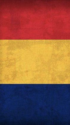Sri Lanka, Flags, Contemporary, Home Decor, Wallpapers, Decoration Home, Room Decor, National Flag, Interior Design