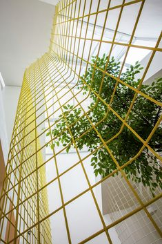 Gallery of Thao Ho Home Furnishings / MW archstudio - Painted Rebar!