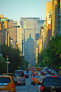Park Avenue morning