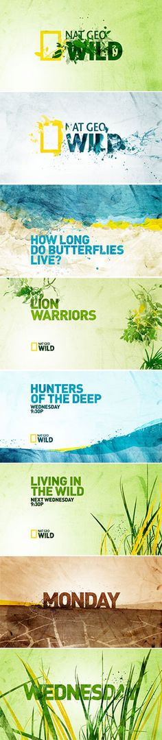 Nat Geo Wild on air branding 2