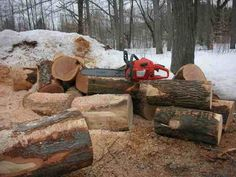 Buying Cheap Firewood - Where To Find It