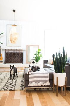 Midcentury modern living room with a large Morrocean rug, a sectional, and a fireplace