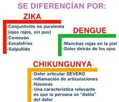 Así Somos  Campaña de Prevención sobre Dengue daf37546ac6