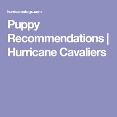 Puppy Recommendations | Hurricane Cavaliers