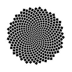 'Sunflower Seed Fibonacci Spiral, Golden Ratio, Mathematics, Geometry' Poster by Anne Mathiasz Fibonacci Tattoo, Fibonacci Spiral, Fibonacci Number, Mathematics Geometry, Sacred Geometry, Maths In Nature, Design Tattoo, Golden Ratio, Sunflower Seeds