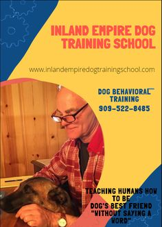 If your dogs demonstrate extremely aggressive behaviour and bites, even to the passerby's, best dog training for aggressive dogs can help calm them down. Dog Training School, Best Dog Training, Lackland Air Force Base, The Dog Father, San Bernardino County, Dog Best Friend, Behavior Modification, Behavioral Issues, Aggressive Dog