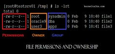 Basic Linux and Unix fundamentals of file permissions and ownership. Learn what are they and how to set/edit them in different ways.