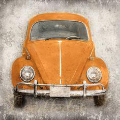 Orange Bug (or CHOOSE your color) - Vintage Style Original Photograph 8x8 or 8x10, $28.00 USD. More info here: http://www.etsy.com/listing/78499211/orange-bug-or-choose-your-color-vintage?ref=tre-767666088-3