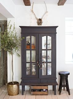 Interior decorating styles 442478732124881011 - Indoor olive tree with vintage cabinet eclectic style on Thou Swell Kevin O'Gara Indoor Olive Tree, Sweet Home, Home And Deco, Eclectic Style, Home Fashion, Interior Inspiration, Painted Furniture, Painted Wood, Black Furniture
