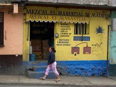Mezcal store, Oaxaca.
