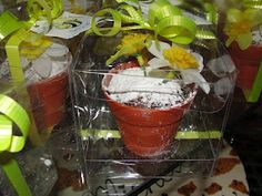 Cute Party Favor Idea: Chocolate Chip Cake Sprinkles with Powdered Sugar Baked in A Flower Pot (Theme for Event (Baby Shower) was April Showers Bring May Flowers)...Good for Any Spring Event Though