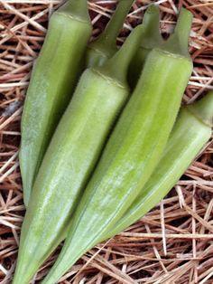 Emerald Okra (56 days)