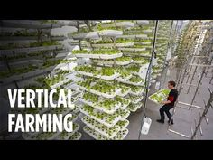 This Farm of the Future Uses No Soil and 95% Less Water - YouTube