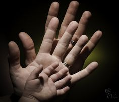 Family Hands   Flickr - Photo Sharing!