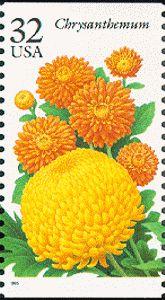 Chrysanthemum US postage stamp