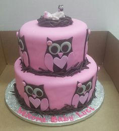 Calumet Bakery Owl fondant two tier with gum paste baby topper.  Too Cute.