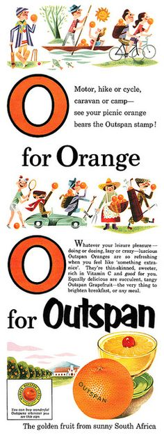 Outspan Oranges advertisement, September 1953.